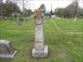 Image for George F. McElvy - Rosenberg Cemetery, Rosenberg, TX