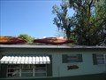 Image for Soggy Bottom Kayak Guided Trip - Dunnellon, FL