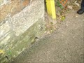 Image for Cut Benchmark in Cardwell Road, Bodmin, Cornwall