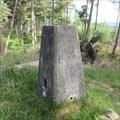 Image for O.S. Triangulation Pillar - Hill of Tillylair, Aberdeenshire.