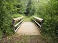 Image for Walking Bridges - Horseshoe Bay MN