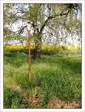 Image for TB 2204-24 U háje, CZ