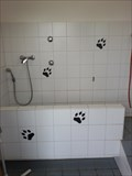 Image for Hundebad - Camping Brunnen - Brunnen, Germany, BY