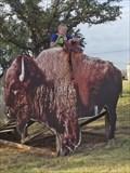 Image for Ride a 2-D Buffalo - Abilene, TX
