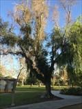 Image for Costa Mesa Women's Club - Costa Mesa, CA