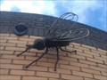 Image for Flies - Ipswich, Suffolk
