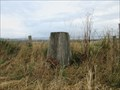 Image for Trig Pillar - Findowrie, Angus.
