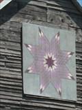 Image for Purple Starburst - Dryden, VA
