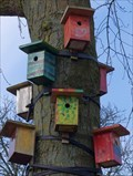 Image for Colored Bird Houses - Nunspeet NL