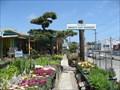 Image for Yabusaki's Dwight Way Nursery - Berkeley, California