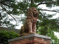 Image for Lions Gate Lions - Stockbridge, MA
