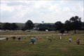 Image for Lawnwood Memorial Park - Covington, GA