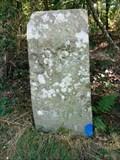 Image for Borne 89, forêt de Fontainebleau - France