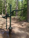 Image for Hand-Operated Pump at Amnicon Falls southeast of Superior, WI USA