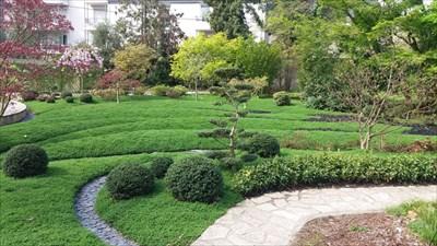 Le Jardin Japonais Du Jardin Botanique Tours Centre Japanese