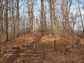 Image for Towner Mound - Kent, Ohio