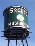 Image for Giant Can of Mushrooms - Westminster, Colorado