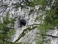 Image for Eisriesenwelt - Giant Ice World - Werfen