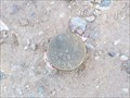 Image for Wild Horse Place/Consolidated Canal Benchmark - Chandler, Arizona