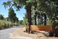 Image for Palomar Mountain State Park  - California