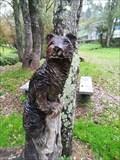 Image for Otter - A Valenzá, Barbadás, Ourense, Galicia, España