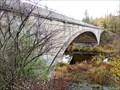 Image for Marne Bridge - 1920 - Spokane, WA
