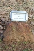 """Image for Charles E. """"Red"""" Barnett -- Roselawn Cemetery, Denton TX"""