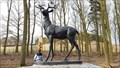 Image for Deer - Memorial Wood - Bradgate Park, Leicestershire