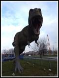 Image for Tyrannosaurus rex - Sosnowiec, Poland