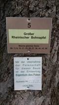 "Image for Arboretum - Obst Infoweg ""Höhe"" - Winterbach - Saarland - Germany"