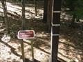 Image for Oleno State Park Flood Marker