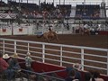 Image for Rodeo of the Ozarks - Springdale AR