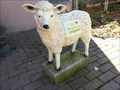 Image for Little Lamb - Mehrstetten, Germany, BW