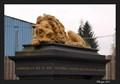 Image for Snoozing Lion - Trutnov - Porící, Czech republic