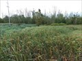 Image for Muketawa Trail Ravenna West - Ravenna, Michigan