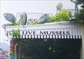 Image for Mussel Boys, Havelock, South Is. New Zealand.