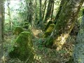 Image for Siegfried Line- Dragon Teeth, Losheim, Germany