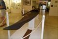 Image for MacMillan Kayak  -  Provincetown, MA