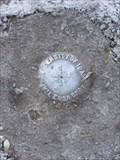 Image for University of Idaho Benchmark BM-49