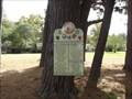 Image for Memorial Park & Gardens of Gilbreath Memorial Library - Winnsboro, TX