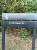 Image for Millenniumbos, Maastricht, Netherlands