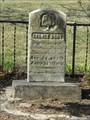 Image for George Burt - Davis Cemetery - Lawrence, Ks.