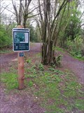 Image for Rock 'n' Horse Trail just north of Aldergrove Bowl 1 — Aldergrove Regional Park, BC