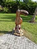 Image for Keel Billed Toucan - Harvest Caye, Toledo, Belize