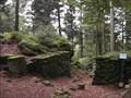 Image for Le camp celtique de La Bure (St-Dié))