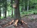 Image for Beaver Pond register, Bristol Hills Trail