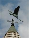 Image for Long-legged bird - Richford, Vermont