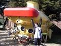 Image for Yellow Submarine