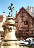 Image for La fontaine du Bareuzai - Dijon, France
