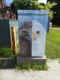 Image for Juvenile vs. Adult Bald Eagles - Pittsfield, MA